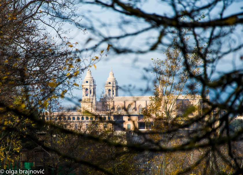 Cathedral-0759